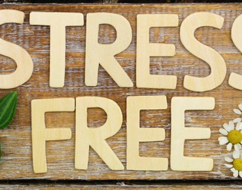 Stress Free Sign
